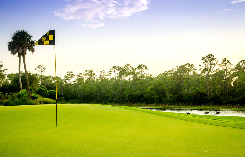 18 Hole TPC Golf Membership Included at Treviso Bay